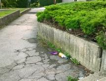 Ormož - smeti
