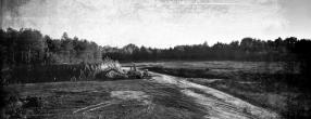 Glinokop Hardeška šuma